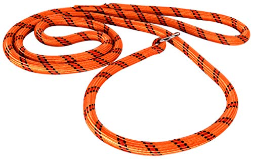 Autre Marque Laisse NYL COR Lasso 1,80M Orange