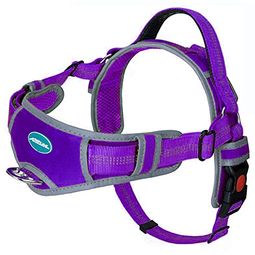 ThinkPet No Pull Harness Breathable Sport Harness - Escape Proof/Quick Fit Reflective Padded Dog Safety Vest with Handle Back/Front Clips, Easy for Medium Large Dog Walking Training, XL Purple