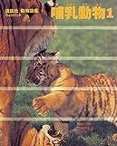 哺乳動物〈1〉 (講談社 動物図鑑 ウォンバット)