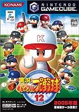 実況パワフルプロ野球12