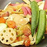 大地の生菓 10種類の野菜チップス 500g こども おやつ お菓子 駄菓子 業務用 大容量 ギフト 母の日 お土産