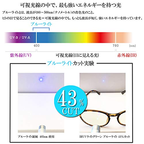 (エイトトウキョウ)eighttokyo老眼鏡ブルーライトカットおしゃれメンズレディース兼用かわいい2.0UVカットシニアグラスリーディンググラス[鯖江メーカー企画]ブラック/ライトグリーンRDTR6124-1+2.0