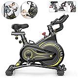 Chlggzw Bicicletas de Ejercicio Profesionales para Interiores, Silenciosas Seguridad Doméstica Entrenamiento Inteligente Fitness Cardio Bike