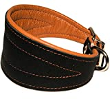 Real Leather Extra Wide Padded Tapered Dog Collar Glossy Black Greyhound Saluki Deerhound Lurcher Whippet Dachshund (11'-13' Neck; 2' Wide, Toffee)