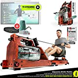 Exhibition novelty 2020! Premium water rowing machine with patented folding function +App function +...