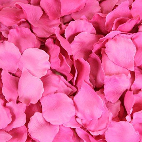 Koyal Wholesale 200-Pack Silk Rose Petals, Fuchsia