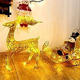Eisen Funkeln LED Rentier mit Schlitten Beleuchtet Warm Weiß Metall Rahmen Weihnachten Deko für Innen Außen,60cm
