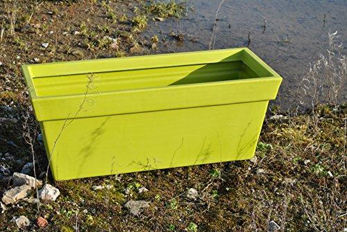 Prosperplast Pflanzkasten/Blumenkasten in frischem Grün,Jardinere,Kunststoff,60cm lang