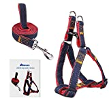 ARIKON Dog Leash Harness, Adjustable and Heavy Duty Durable Denim Dog Leash Collar for Training Walking Running, Best for Large Medium Small Dog