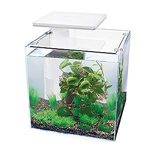 Superfish Qubiq Aquarium 30 with LED Lighting – White