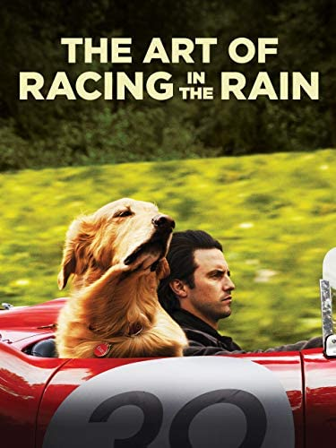 The Art of Racing in the Rain product image