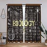 Cortinas educativas, pizarra negra biología escrita a mano símbolos escolares aula sala de estar cortina ventana cortina, 139.7 cm de ancho x 183 cm de largo, negro, marrón y amarillo pálido