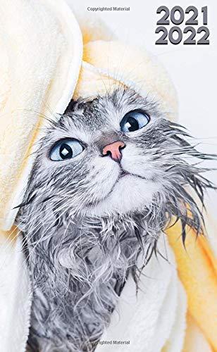 2021-2022: Funny Fluffy Wet Cat Two Year (24-Months) Monthly Pocket Planner Organizer Calendar Agenda