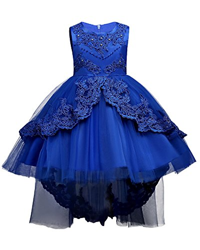 WEONEDREAM Little Girl Dress Casual Birthday Communions Size 7 8 Wedding Ball Gowns Tutu Dress Girls Dresses Lace Embroidery Pearl Summer Sundress Sleeveless Knee Pageant Clothes (Sapphire, 140)