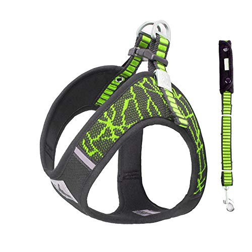 BlingRoKi No Pull Dog Harness Leash Set Adjustable Puppy Walking Halter Harnesses for Terrier,French Bulldog,Westie,Lab(Green/Set,XS)