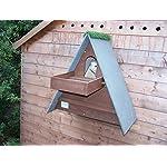 Barn Owl Nest Box With Shelf (Dark Brown)