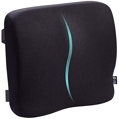 5 STARS UNITED Back Support for Office Chair  Memory Foam Lumbar Pillow  Perfect Cushion for Car Computer and Desk Seat