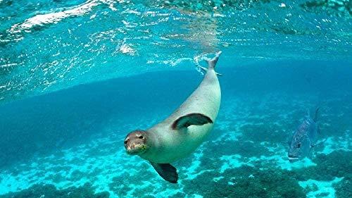 Zeehond zwemmen 1000 puzzels voor volwassenen, houten puzzels, educatief speelgoed voor kinderen, woondecoratie
