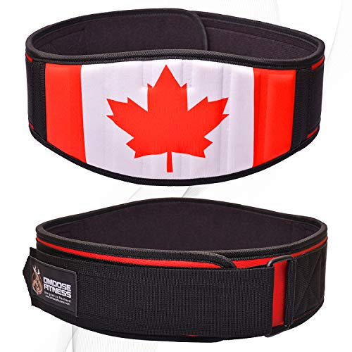 DMoose Fitness Neoprene Weightlifting Belt. Back Cushion Foam Support, Nylon Strap, Reinforced Stitching, Heavy-duty Steel Ring helps Maximize Your Weightlifting & Bodybuilding Workout with proper form (Canadian, X-Large)