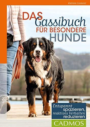Das Gassibuch für besondere Hunde: Entspannt spazieren, reaktives Verhalten reduzieren