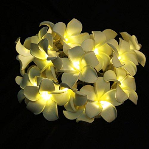 LEDMOMO Leuchtende Blumengirlande, batteriebetrieben, Lichterkette, 20 LEDs, Frangipani Plumeria Blume, Dekoration (warmweißes Licht)