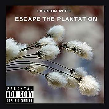 Escape the Plantation