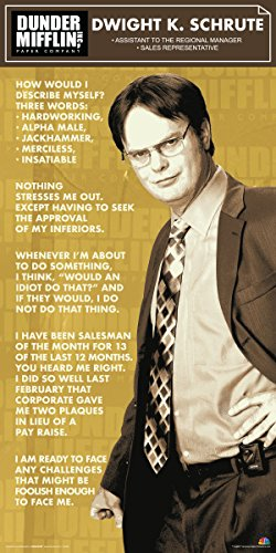 Culturenik The Office Dwight Shrute Corporate Ladder (Dunder Mifflin) Cast Group Workplace Comedy TV Television Show Poster Print, 12 by 24 (unframed)