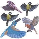 Gardigo Vogelschutz Aufkleber | Farbe: Außen schwarz, innen bunt | Dekorative Vogelaufkleber für Fenster, Türen, Wintergärten, Gewächshäuser