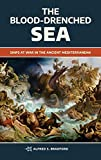 The Blood-Drenched Sea: Ships at War in the Ancient Mediterranean