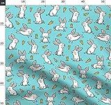 Hasen, Hase, Kaninchen, Frühling, Mohrrüben, Ostern