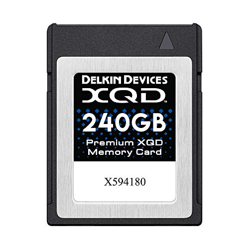 Delkin Devices Tarjeta de Memoria XQD Premium de 240 GB (DDXQD-240GB)