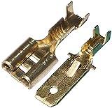AERZETIX: Juego de 200 terminales hembra macho planos cable eléctrico 6.3mm C1266C1364
