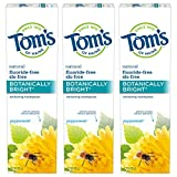 Tom's of Maine Natural Fluoride-Free SLS-Free Botanically Bright Toothpaste, Peppermint, 4.7 oz. 3-Pack