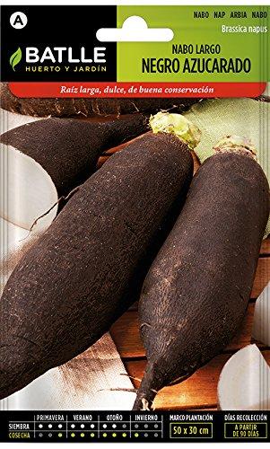 Semences horticoles de Batlle - Navet long noir sucré (9300 Seeds)