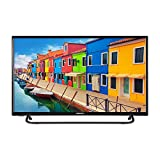 MEDION E13291 80 cm (31,5 Zoll) HD Fernseher (HD Triple Tuner, DVB-T2 HD, CI+, Mediaplayer)