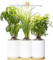 Lilo, le potager d'intérieur autonome de Prêt à Pousser - Nouvelle Generation - Cultivez toute l'année simplement -...
