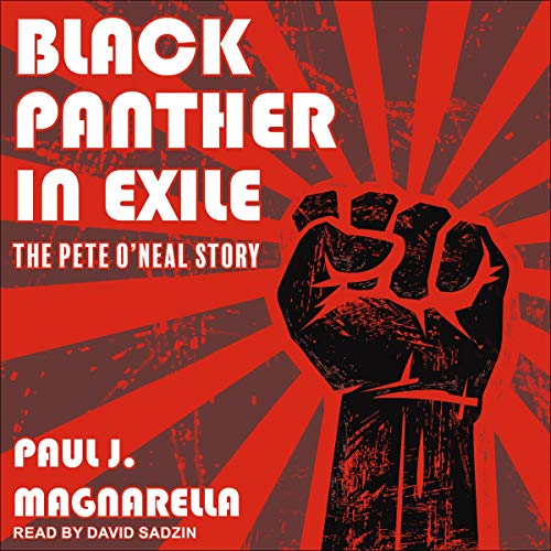 Black Panther in Exile cover art