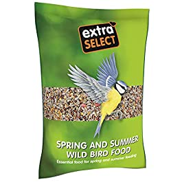 Extra Select Robin and Song Bird Feed Mix, 1 kg