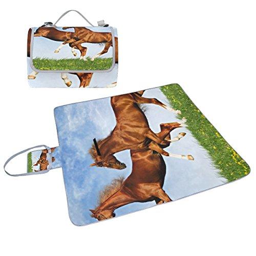 coosun Zwei Pferde Toben auf der Uni Picknick Decke Tote Handlich Matte Mehltau resistent und wasserfest Camping Matte für Picknicks, Strände, Wandern, Reisen, Rving und Ausflüge