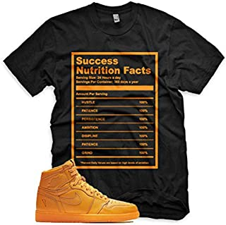 SUCCESS FACTS T Shirt for Jordan 1 Retro Gatorade Orange Peel Purple Blue Lime