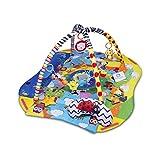 Lionelo Anika 2 en 1 alfombra educativa 115 x 100 x 53 cm almohada Tummy Time 2 arcos 4 juguetes colgantes sonajeros mordedores espejo libro interactivo (Azul-Amarillo)