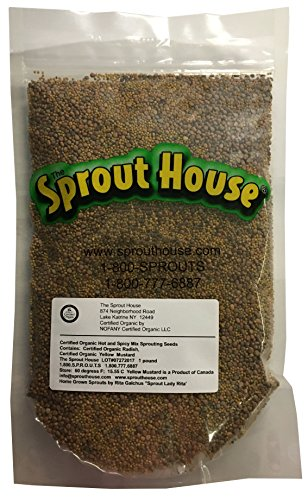 The Sprout House HOT and Spicy Sprouting Seeds Yellow Mustard and Red Radish