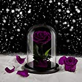 Eterfield Preserved Real Rose Handmade Eternal Rose in Glass Doom Gift for Her Valentine's Day Mother's Day Anniversary Birthday (Small, Purple)