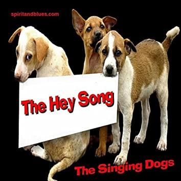 THE HEY SONG - SINGLE