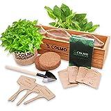 Indoor Herb Garden Starter Kit - Herb Planter Seed Starter Window Herb Garden Growing Kit Indoor Gardening Set...
