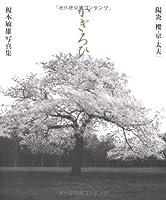 陽炎(かぎろひ) 櫻・京・太夫―榎本敏雄写真集