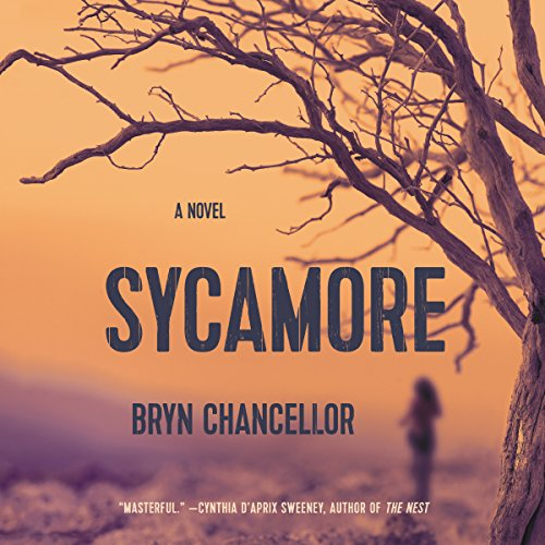 Sycamore audiobook cover art
