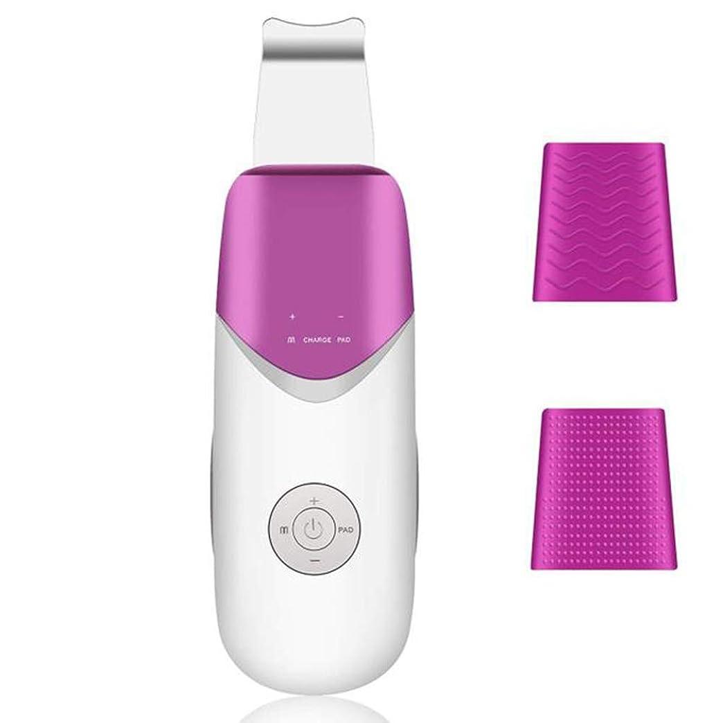 テクスチャースチュワードチャーミング超音波シャベルスキンマシン、イオン振動美容機器、にきび角質ニキビを削除、肌の水分とオイルを改善