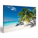 bilderfelix® Bild auf Leinwand Kokosnusspalme auf