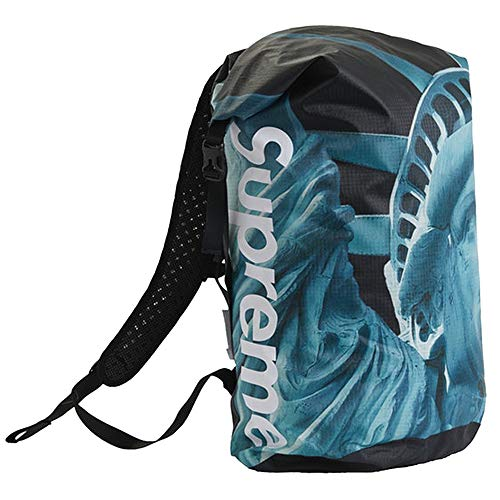 SUPREME × THE NORTH FACE 19FW Statue of Liberty Waterproof Backpack シュプリーム ザ・ノース フェイス バックパック リュックサック カバン バッグ ブラック 黒